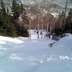 MRG Gladed Trails