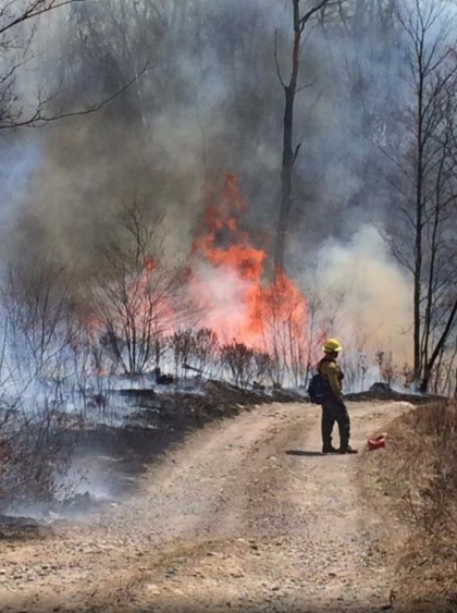 Firefighter on 16-Mile