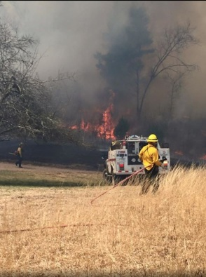 Park Service Fire Fighters on 16 Mile